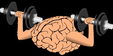 brain-1295128__340